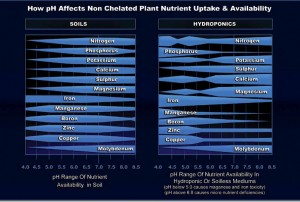 Plant & Vegtable pH Levels
