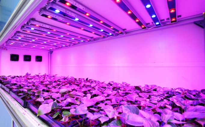 Led grow lights organica garden supply hydroponics led grow lights aloadofball Choice Image