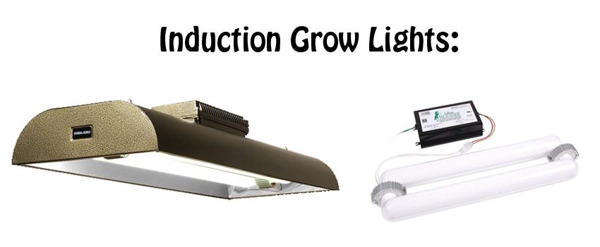 Induction Grow Lights