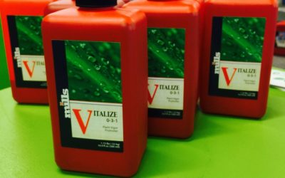 Vitalize by Mills Nutrients